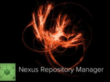 Nexus Repository Manager 2目录遍历漏洞通告
